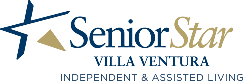 logo_VillaVentura-Blue&Gold